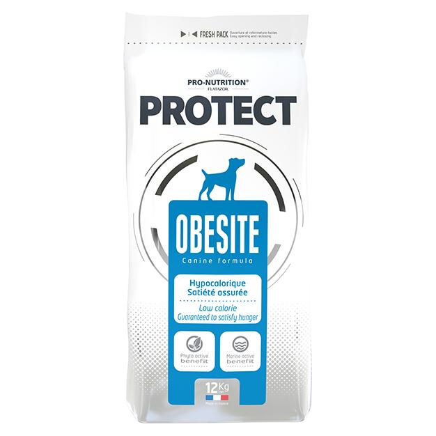 PROTECT OBESITE DOG 12kg