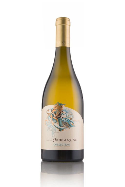 Collection CHARDONNAY 2017 barrel fermented  - White - 750ml