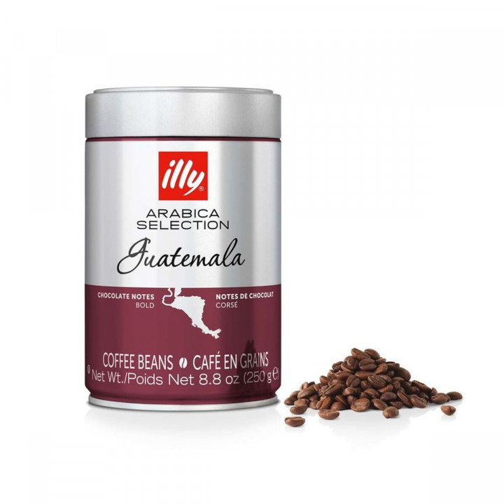 ILLY 250GR BEANS GUATEMALA ARABICA SELECTION
