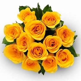 Bouquet of 12 roses - YELLOW