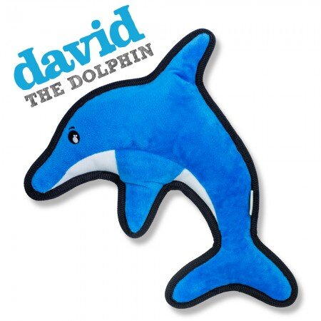 BECO - DAVID THE DOLPHIN