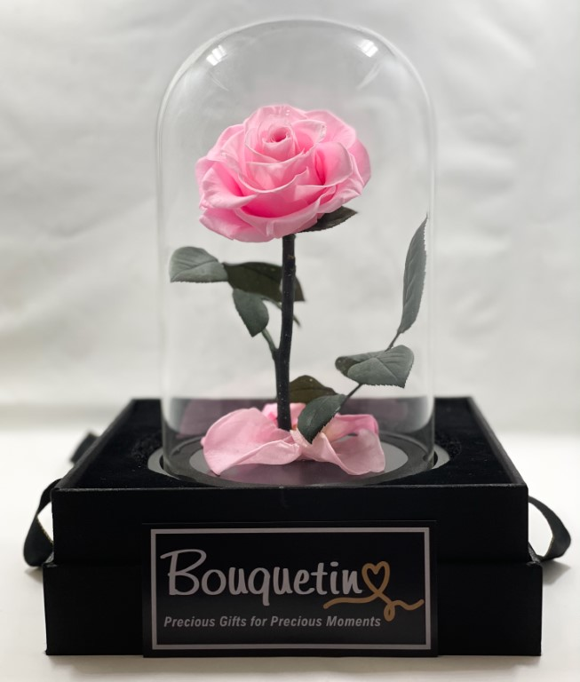 Eternity Forever Preserved Rose in a Class Dome - Pink