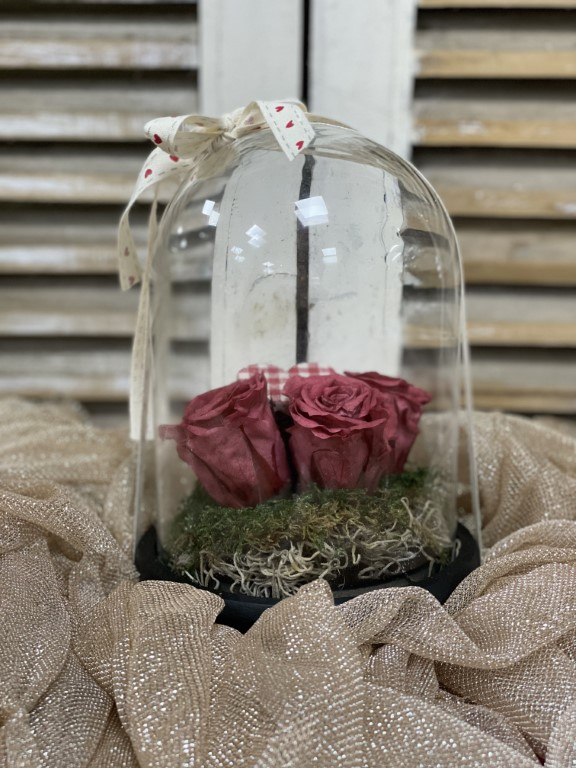 Long Lasting Roses in a Glass Container color Cherry Blosom