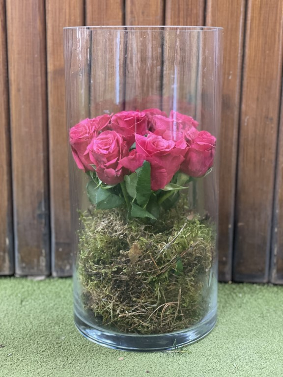 Fuxia Roses in a Glass Vase