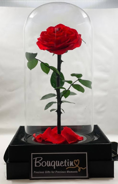 Eternity Forever Preserved Rose in a Class Dome - Red