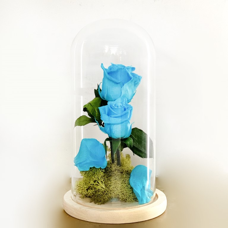 Double Turquoise Forever Rose Dome
