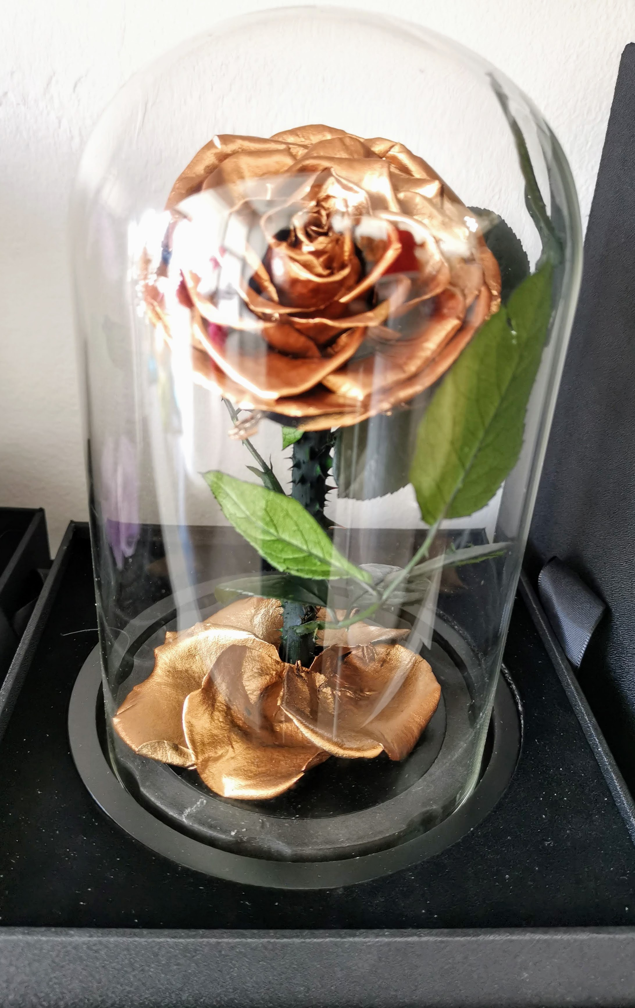 Eternity Forever Preserved Rose in a Class Dome - Gold