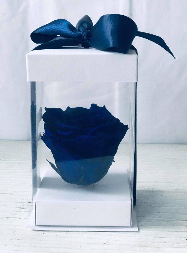 Single Blue Forever Rose