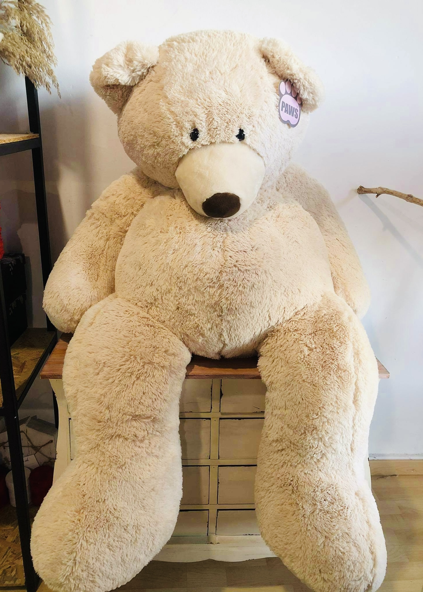 Gigantic Teddy bear - 150cm
