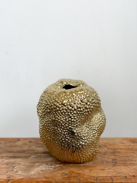 Jackfruit gold