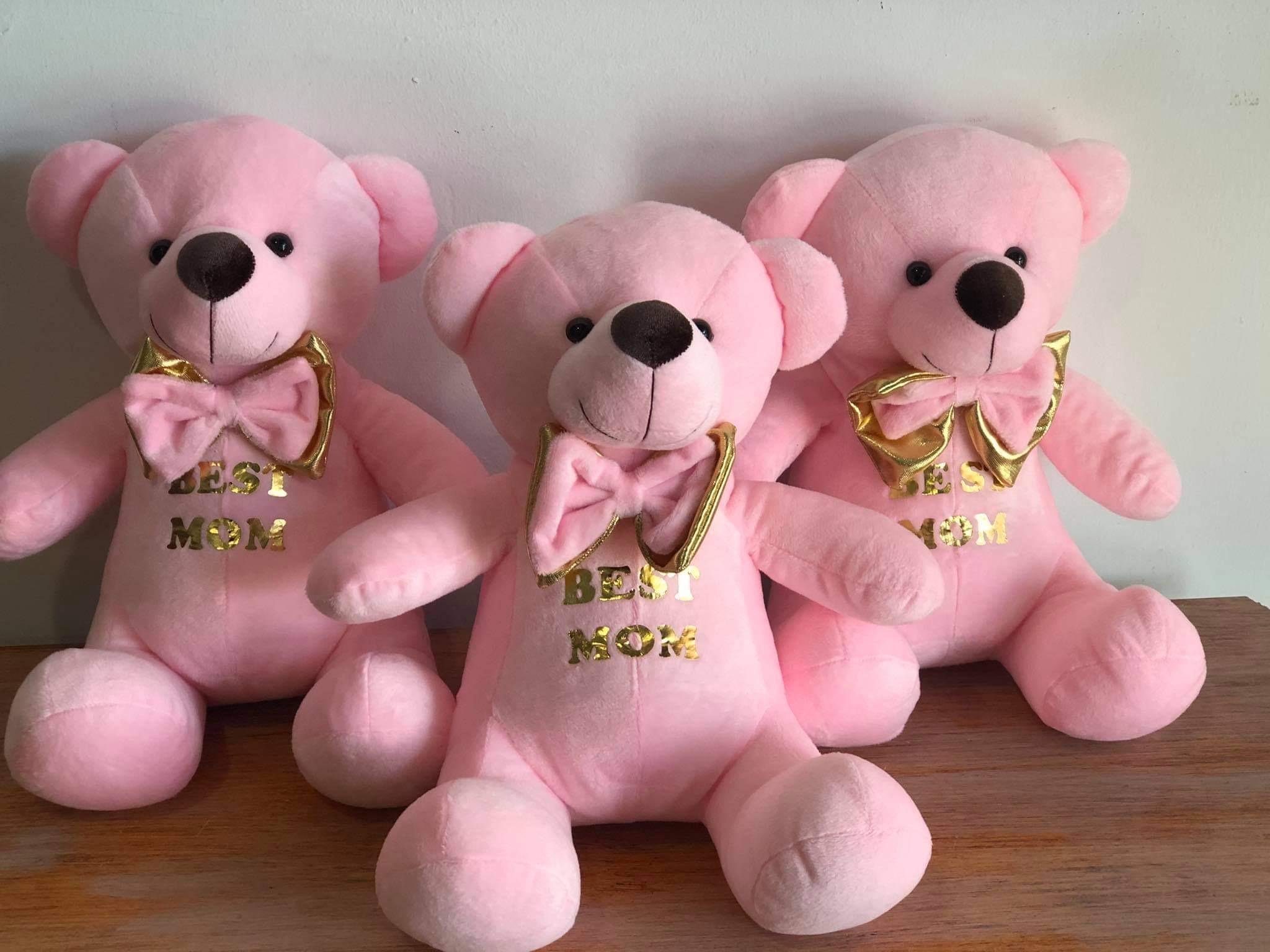Best MoM- Velvet pink teddy
