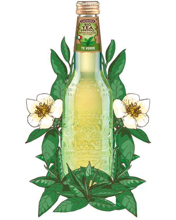 GALVANINA GREEN TEA 355ml