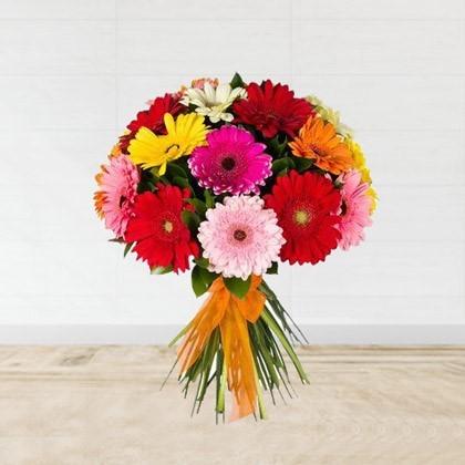 Bouquet Of Colored Gerberas