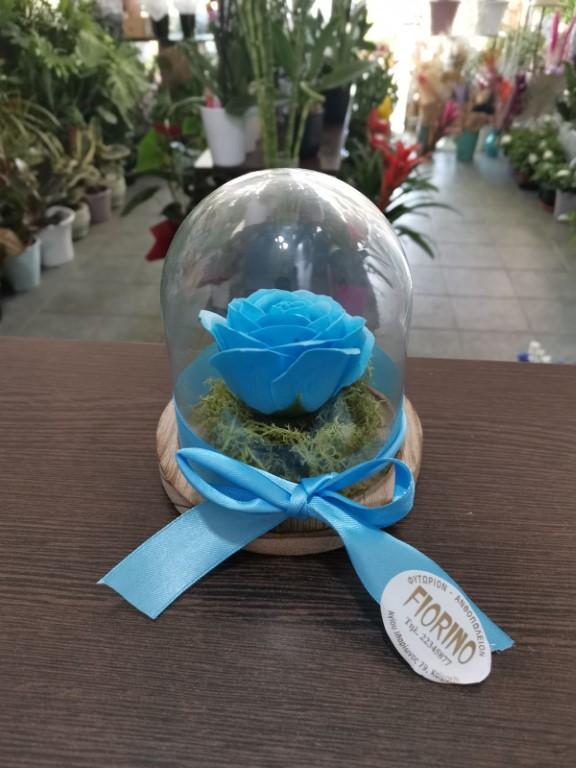 Blue Forever Rose In A Jar