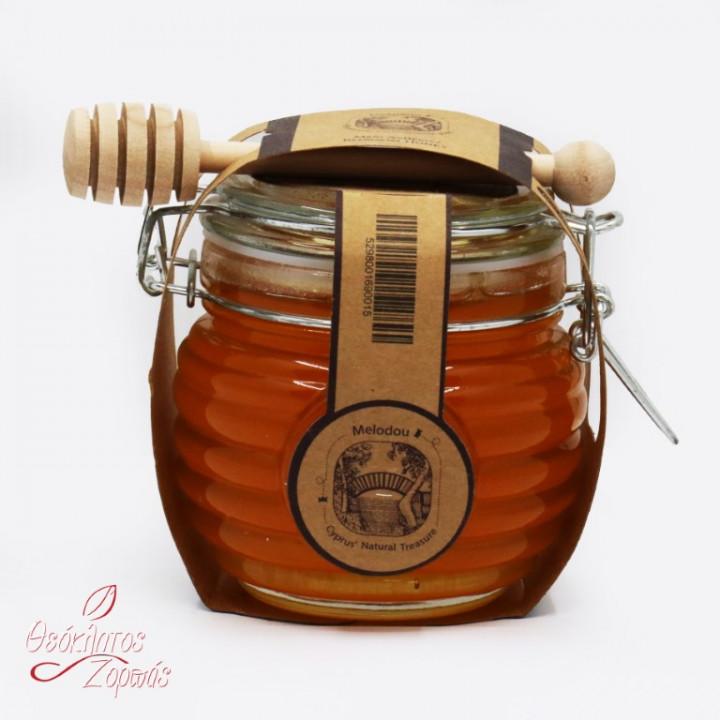 Cyprus natural treasure honey / Μέλι Κυπριακός φυσικός θησαυρός