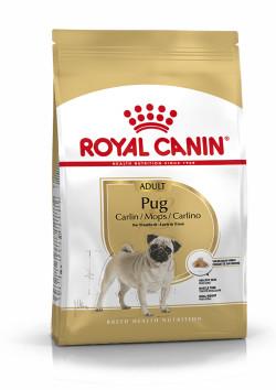 Pug Adult 3Kg