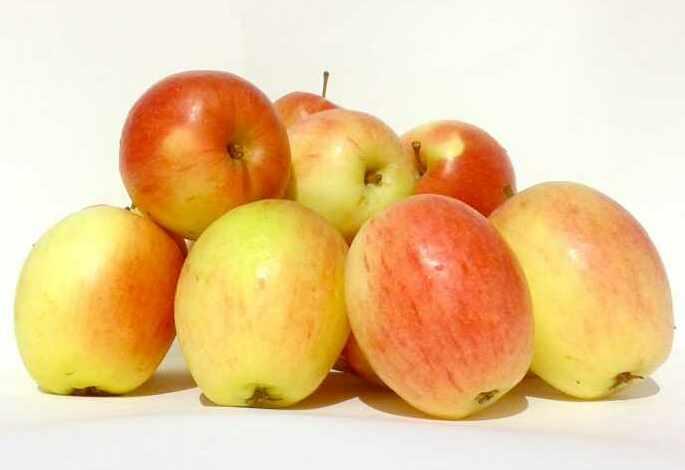 Apples Kathista 1kg
