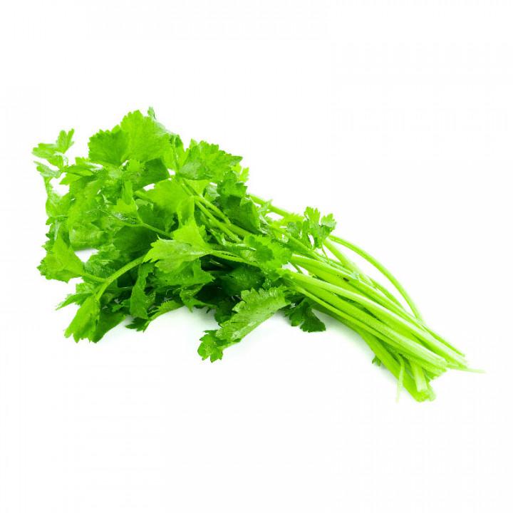 Baby Celery Bunch