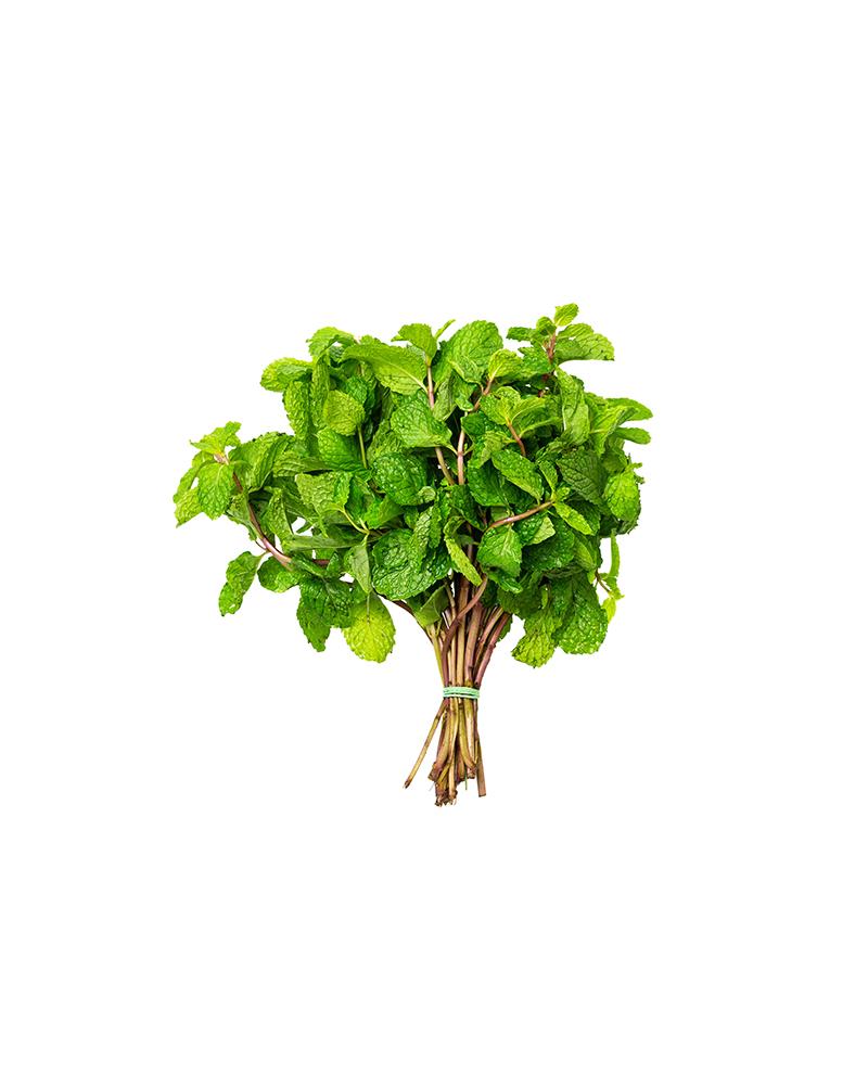 Mint Bunch