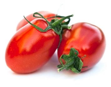 Tomatoes Phoenicians 1kg