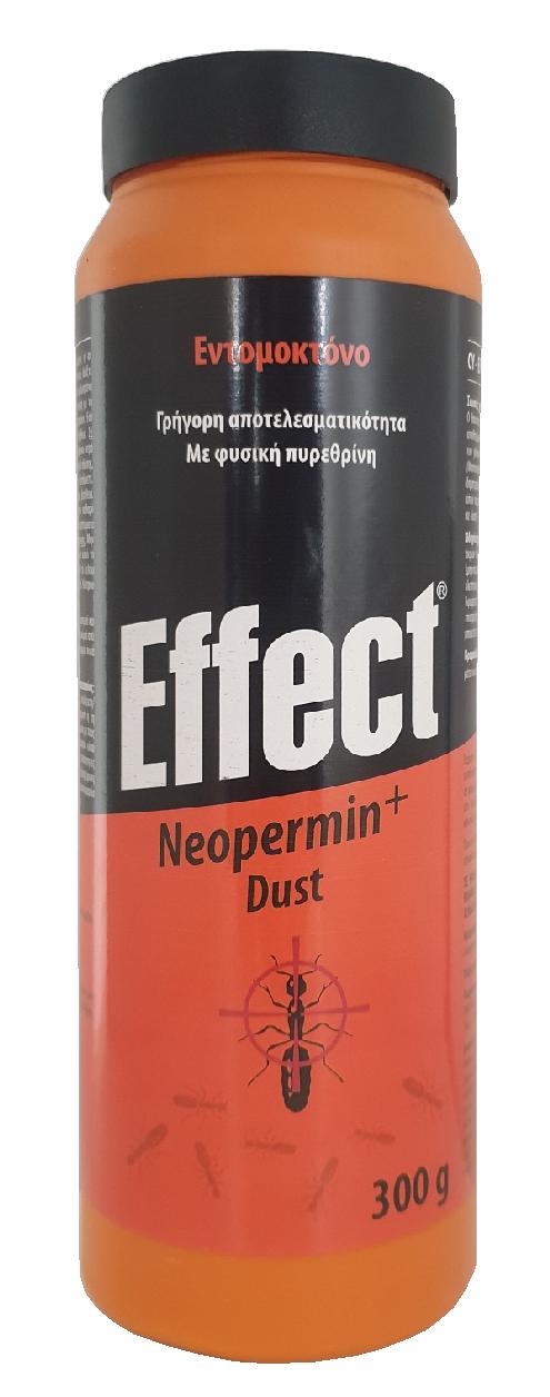 EFFECT DUST 300GR