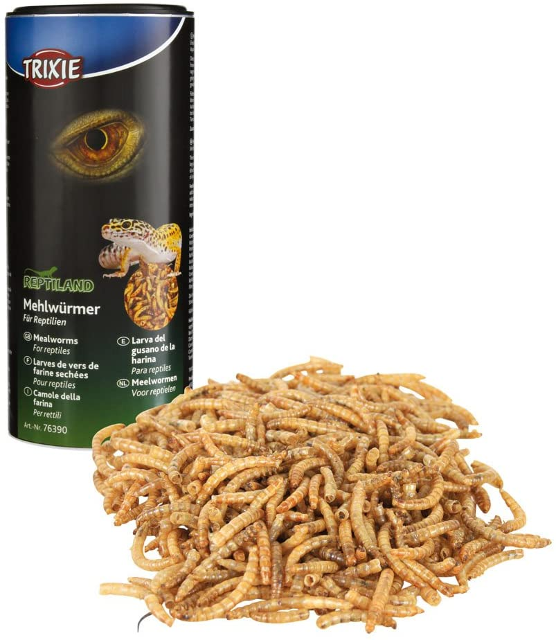 TRIXIE MEALWORMS
