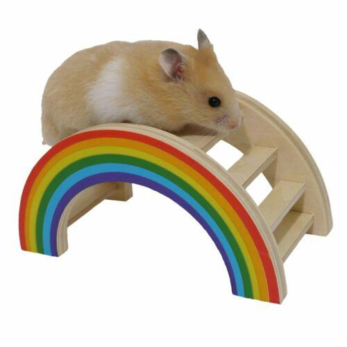 Rosewood Boredom Breaker Small Animal Activity Toy Rainbow